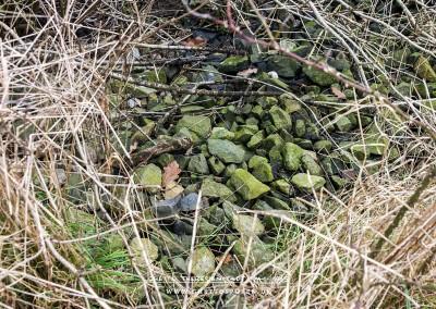 Entlang der ehemaligen Bahnstrecke befinden sich an vielen Stellen Schottersteine. © WILDFISCH