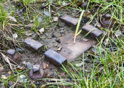 Noch vorhandener Oberbau aus Stahl, der auf einer Holschwelle montiert wurde zur Befestigung der Schiene. © WILDFISCH